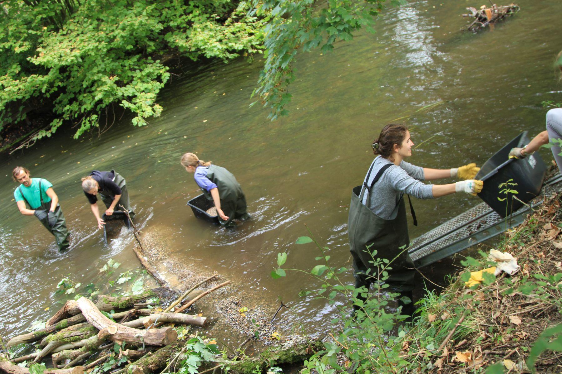Teamwork im Fluss... (Foto: A. Lampe).
