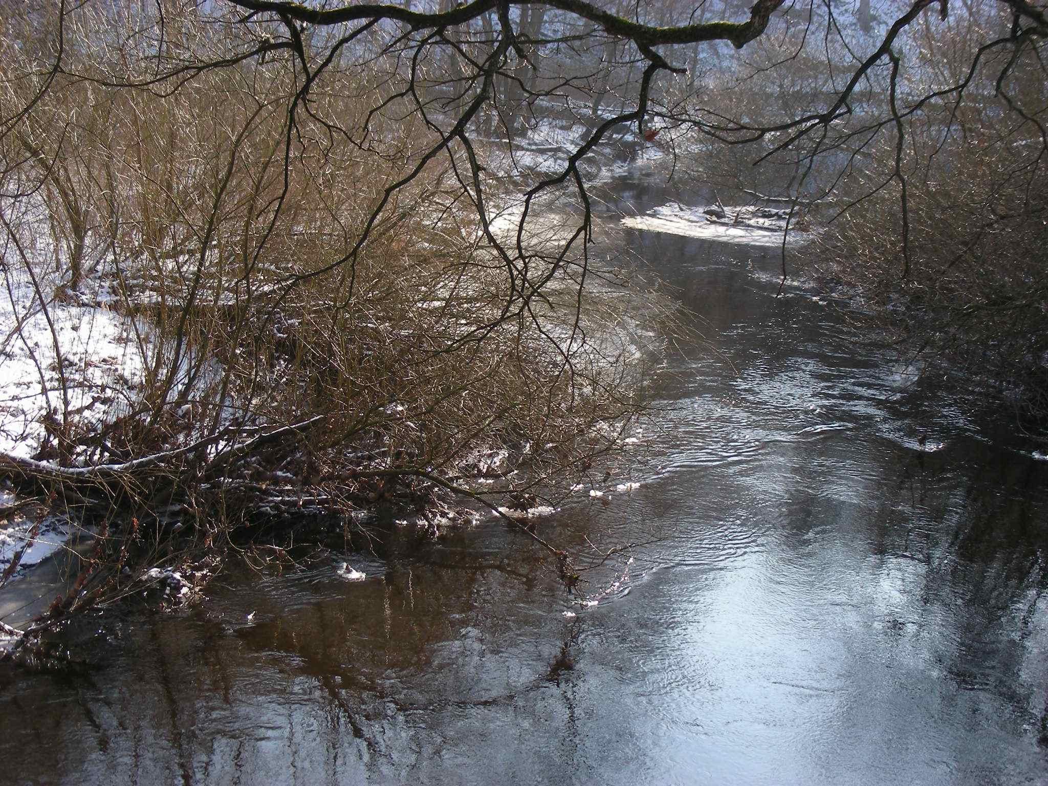 Beteiligungsstrecke, Standort Grevenaubrücke: -15°C in der Nacht - wo die Alster fließt, ist sie am 06.02.2012 nicht zugefroren.