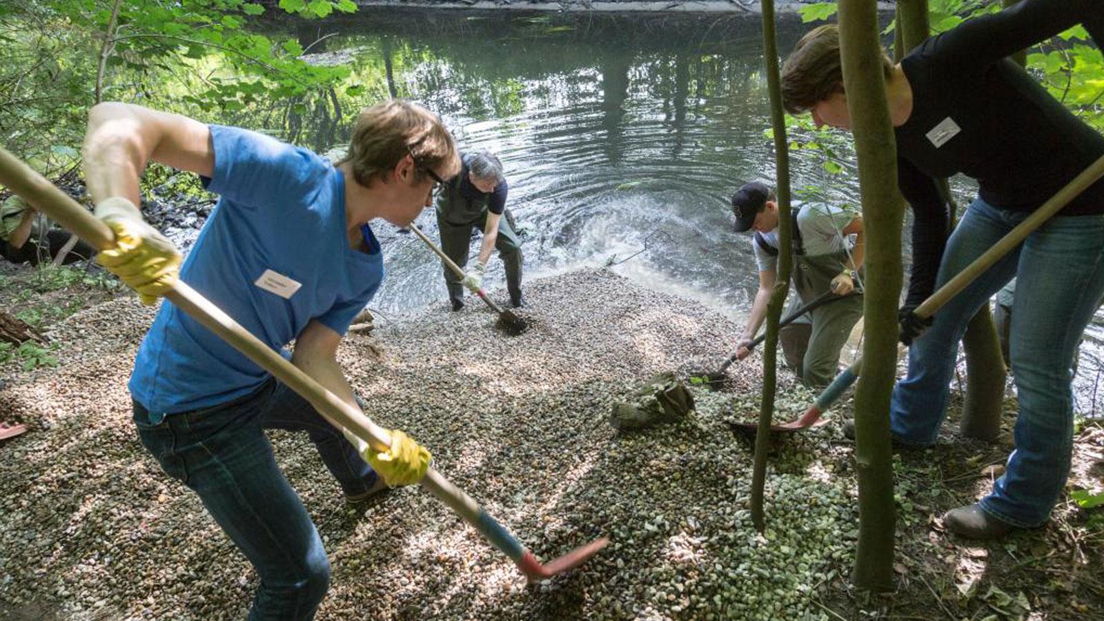 Ehrenamtliche beim Kiesschaufeln für die Alster. Bei Planung und Umsetzung partizipieren Ehrenamtliche. Kies stellt ein wertvolles Substrat der Gewässer dar.
