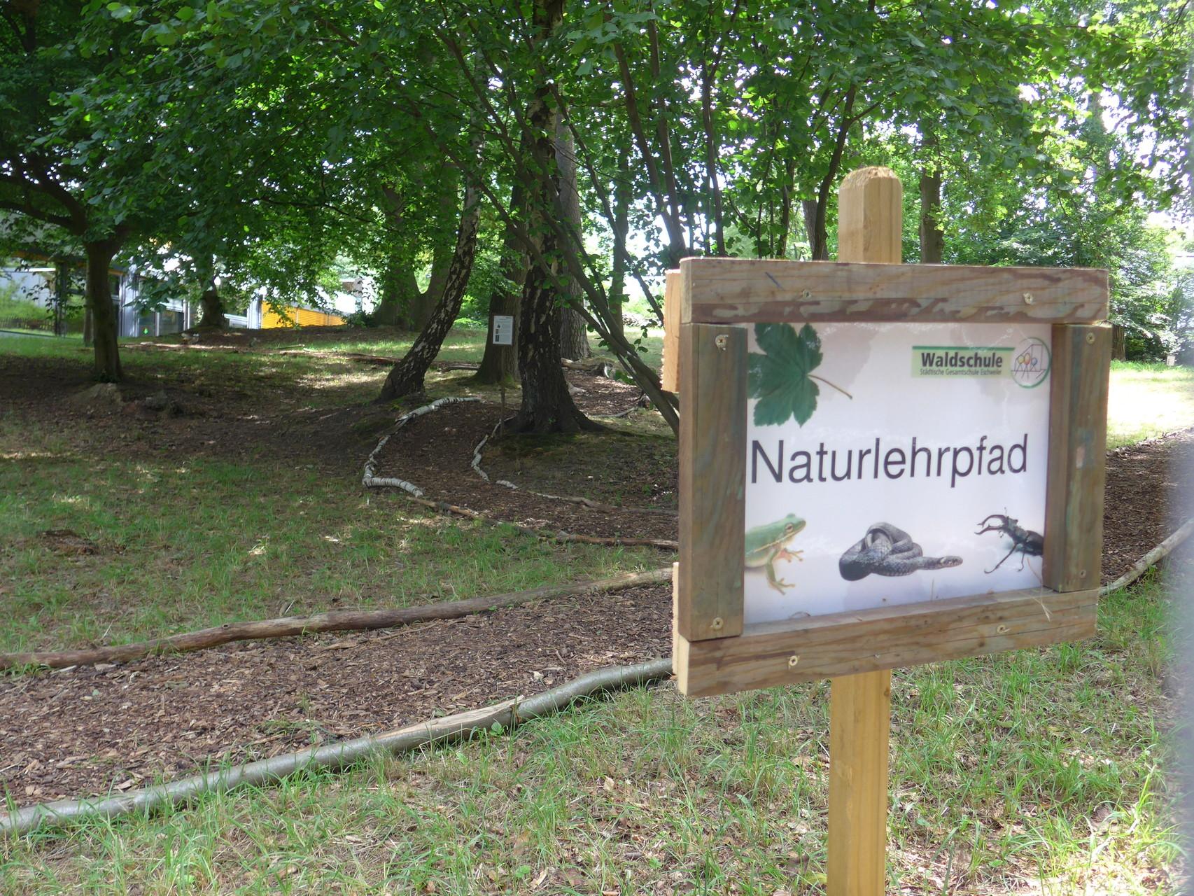 Naturlehrpfad - Projekt aus dem Modul 'Naturwissenschaftlich Handeln'