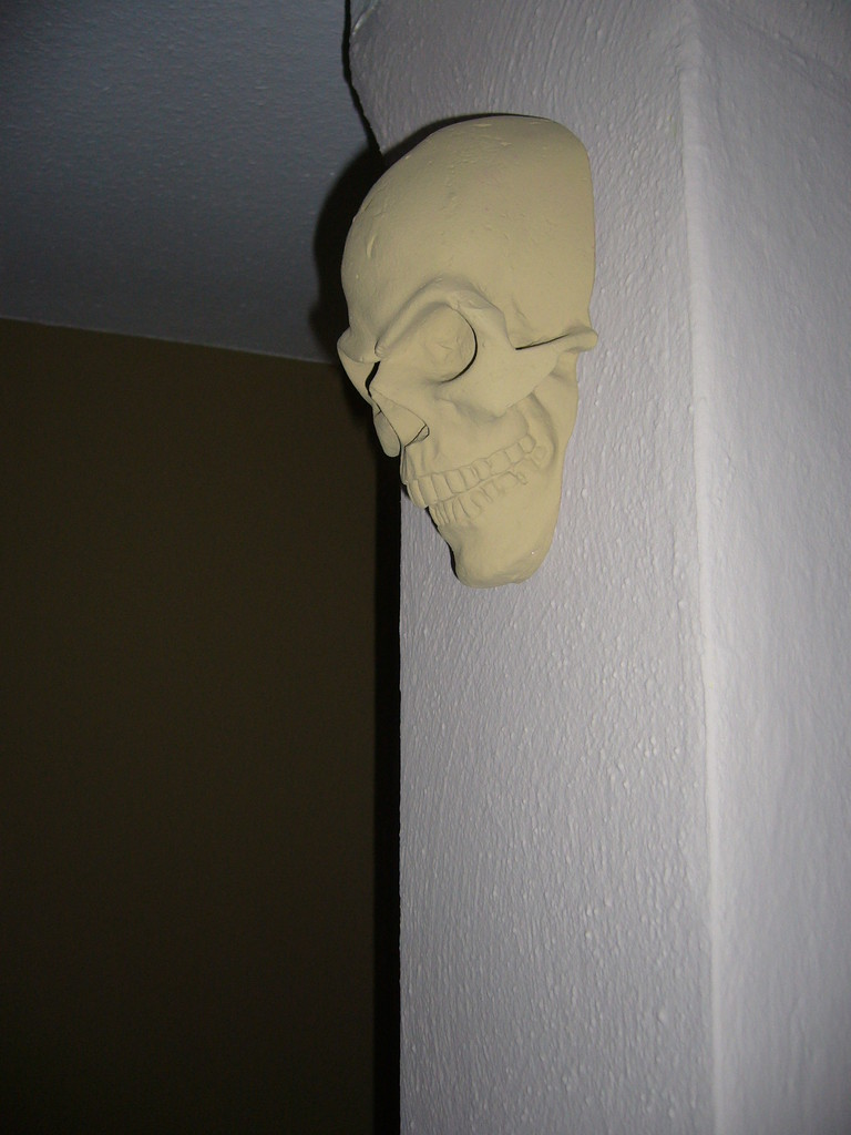 Singleskull