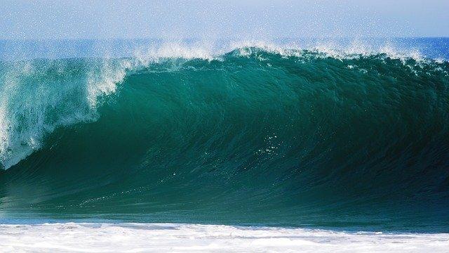 Globaler Ozeanvertrag: Abkommen zum Schutz der Weltmeere