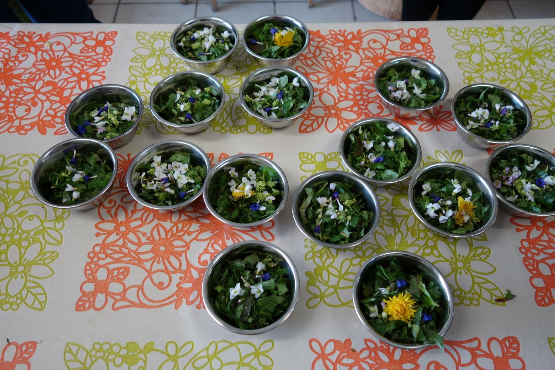Assortiment de salades sauvages