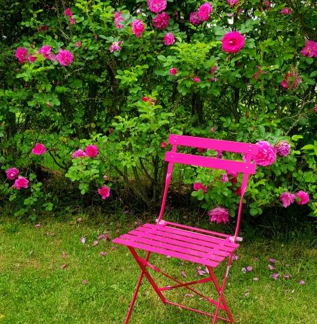 la chaise imite les roses