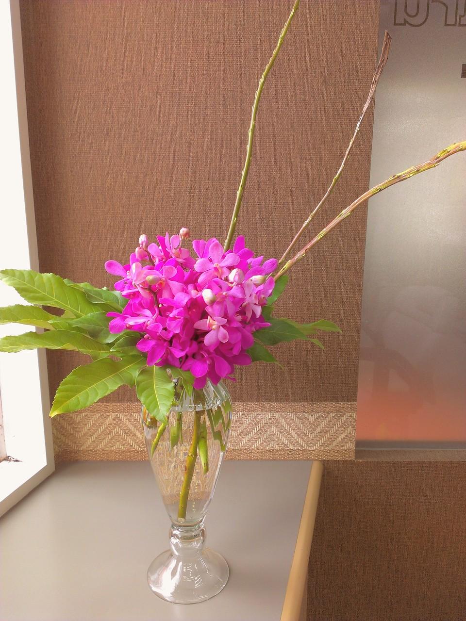 2014.08.13 モカラ カラプソ、八手(別名:天狗の葉団扇)、石化柳 ・本日のお花は、鮮やかなピンク色が美しいモカラ カラプソを、手を添えて守っているかのように見える大きな葉っぱのヤツデ、高さのある3本の枝は、帯状に平たく伸びているのが特徴の石化柳を使用しております。アジアンリゾートを思わせるアレンジメントとなっております。花言葉:モカラ カリプソ【優美・気品・優雅・美人】、八手【分別・親しみ・健康】、石化柳【たくましさ】