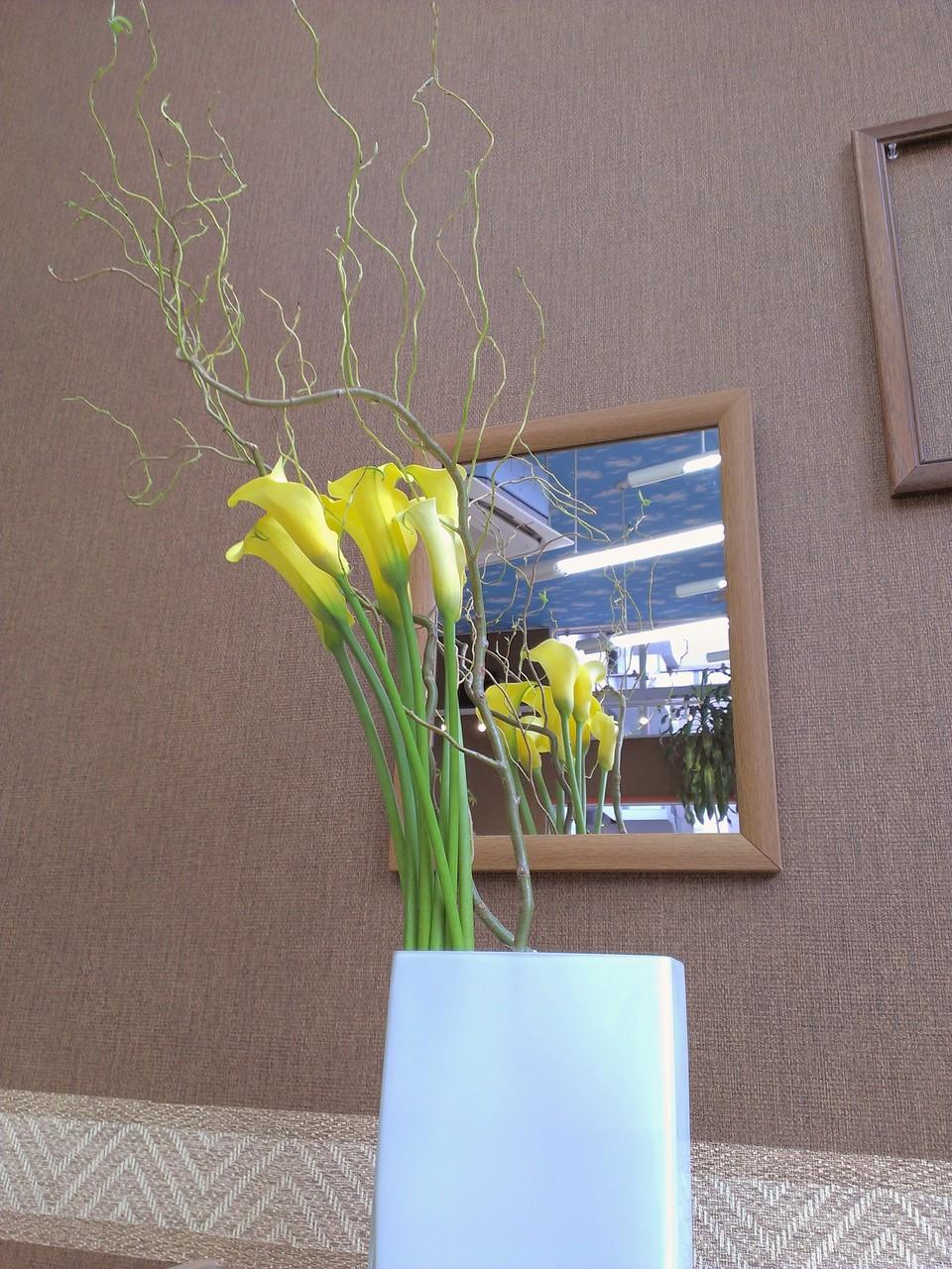 2014.07.09  カラー:ブラックマジック、雲竜柳(ウンリュウヤナギ) ・上品に伸び上がるカラーと自由奔放に伸びる柳の絶妙なバランスをお楽しみください。柳の先に新芽が芽吹くそうです。 花言葉は=カラー:ブラックマジック【実らぬ恋・・・】、雲竜柳【素早い対応】と言う意味があるようです。今回のアレンジには直接意味はなさそうですf(・・;)