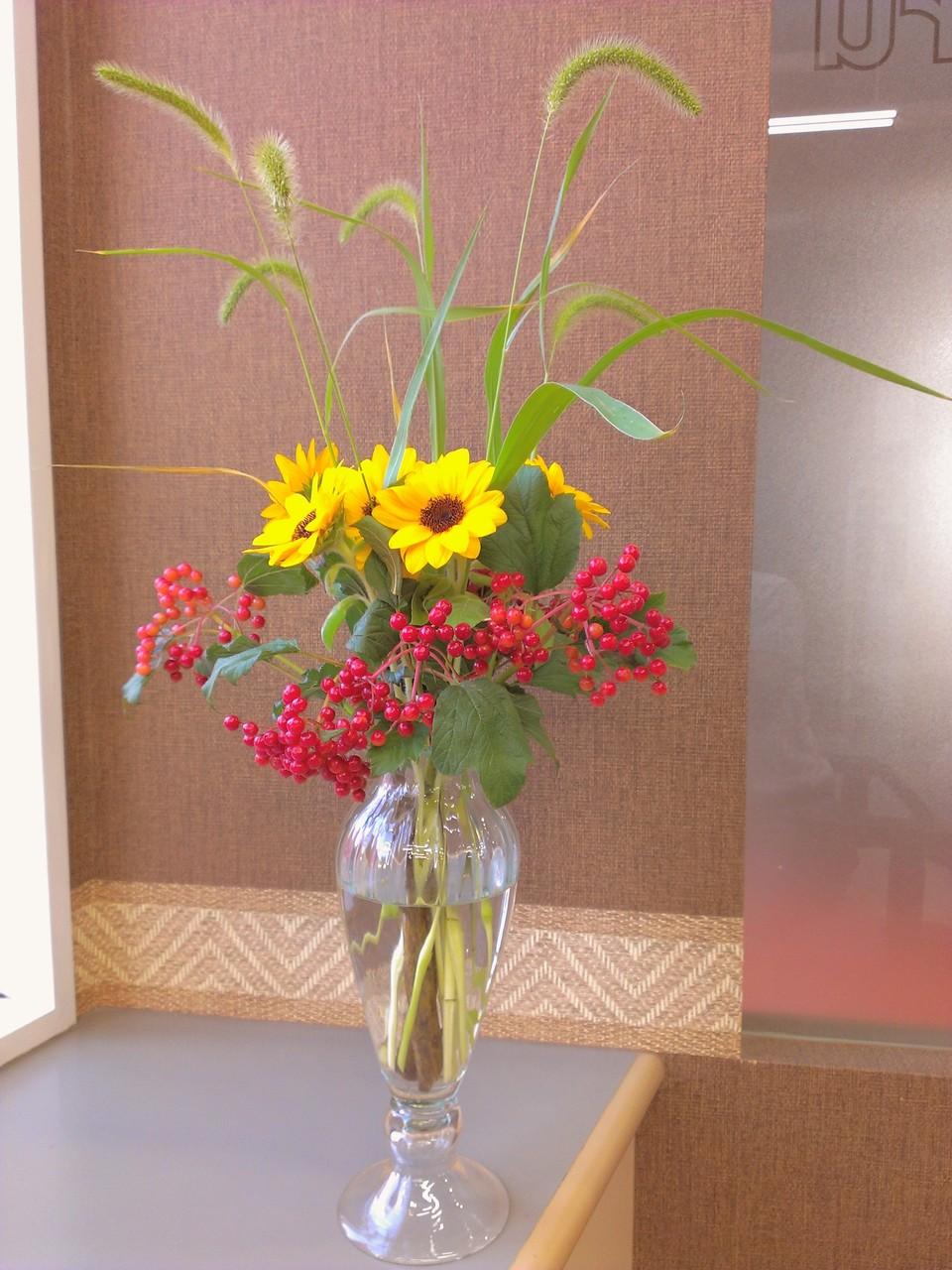 2014.08.27  ひまわり、ビバーナムコンパクタ、狗尾草(エノコログサ) ・真夏の元気じるし黄色いひまわりと、真っ赤な実をたわわに実らせたビバーナムコンパクタ、背の高い稲からフサフサとした花穂が垂れる、まさに子犬の尻尾を思わせる名前に由来の狗尾草(エノコログサ)、よく知られた別名:ねこじゃらし。晩夏をイメージしたアレンジメントとなります。花言葉:ひまわり【あこがれ、熱愛、光輝】、ビバーナムコンパクタ【茶目っ気、幸せが飛んでくる】、狗尾草【遊び、愛嬌】