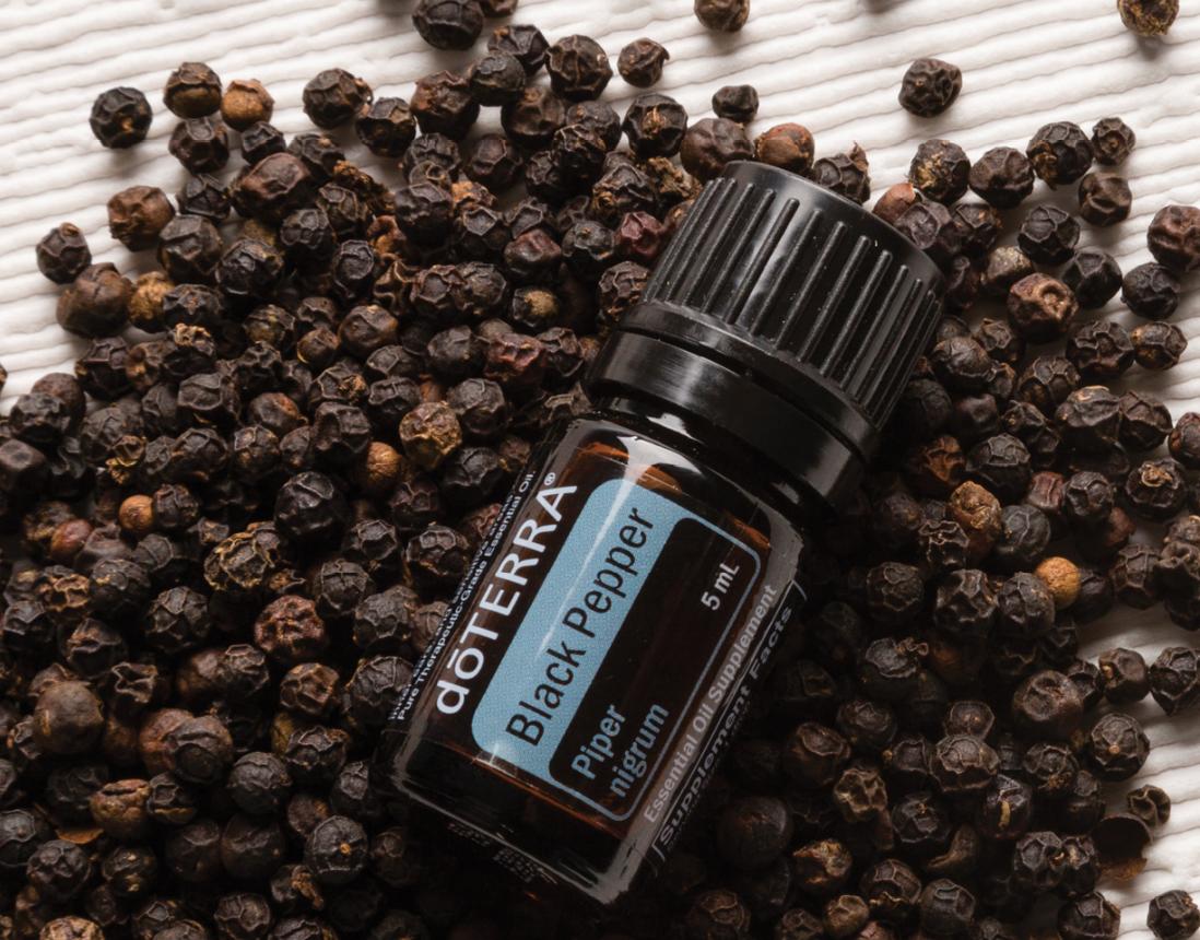 Aroma Welt: doTERRA Ätherische Öle Black Pepper - Schwarzer Pfeffer Öl