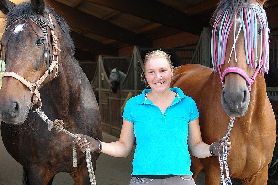 Die Pferde werden einzeln oder zu zweit auf die Weiden gebracht.