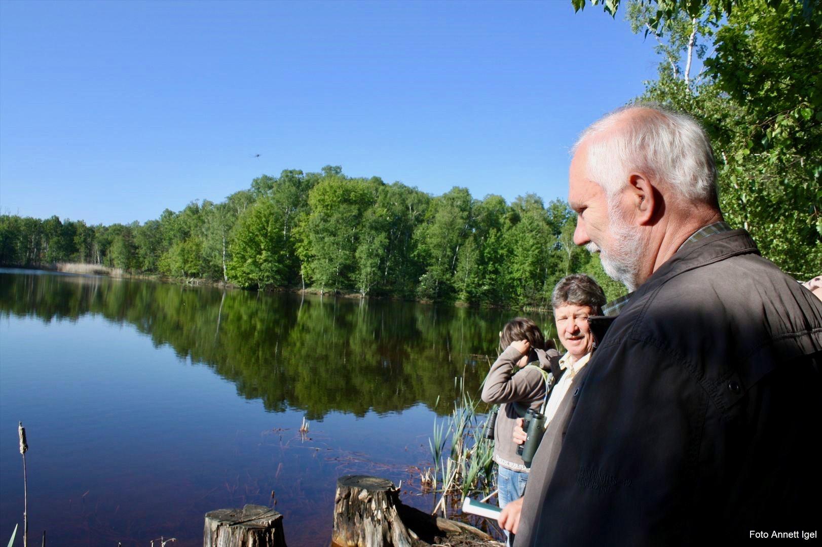 Vogelbeobachtung im Naturschutzgebiet Luisensee