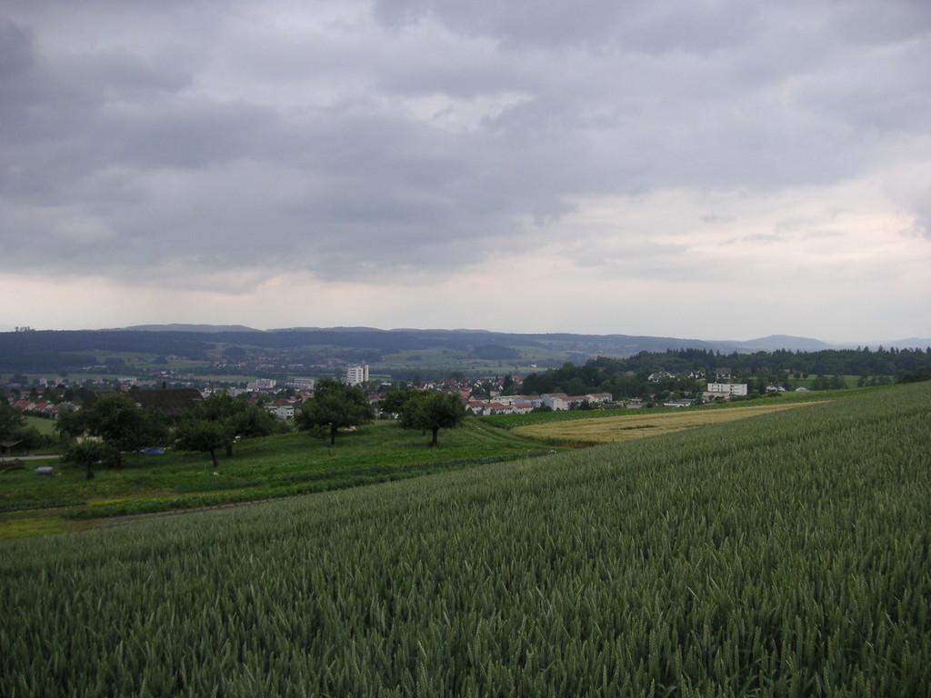 Solothurn zurück