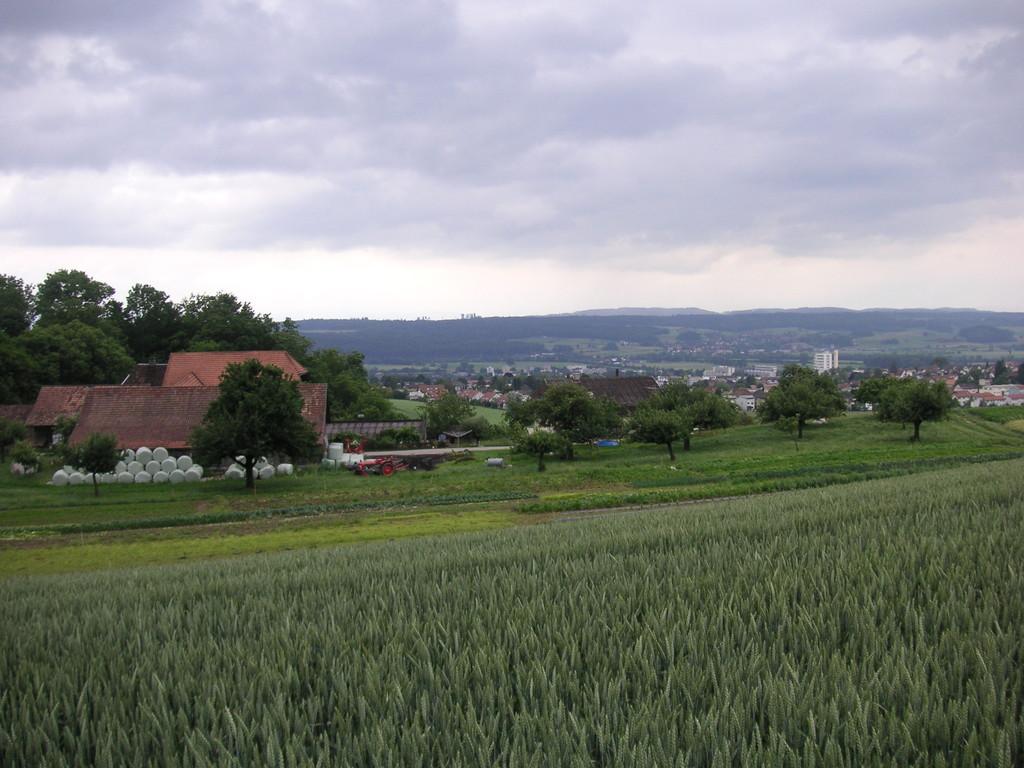 nach Langendorf