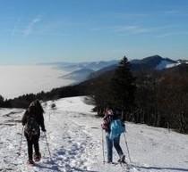 Ferien Schweiz - Wandern-Jura.ch - ein Lokalportal
