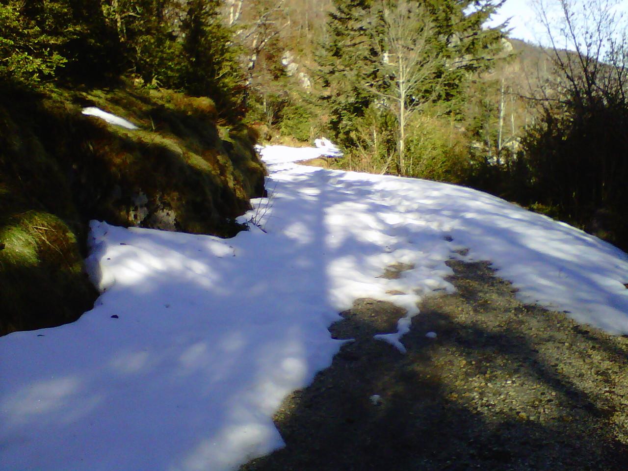 au km 8 vers Quirbajou.... sur la neige il marchera