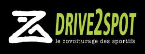 logo drive2spot