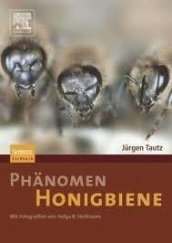 Phänomen Honigbiene von Jürgen Tautz
