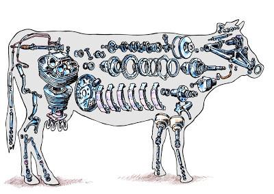 Vache par François Bouët