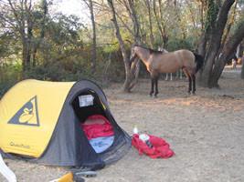 Promenades à cheval : Sorède à 10 mn.