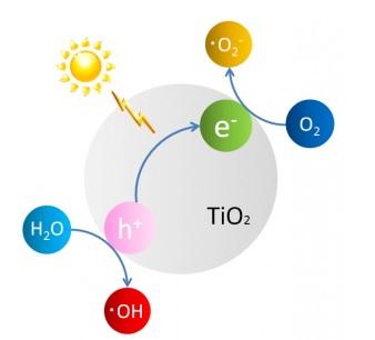 酸化チタン光触媒による活性酸素の生成