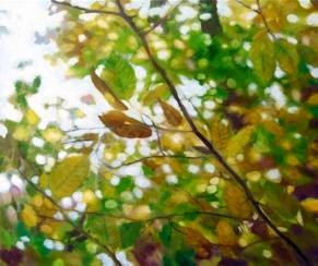 Herbst 70x80