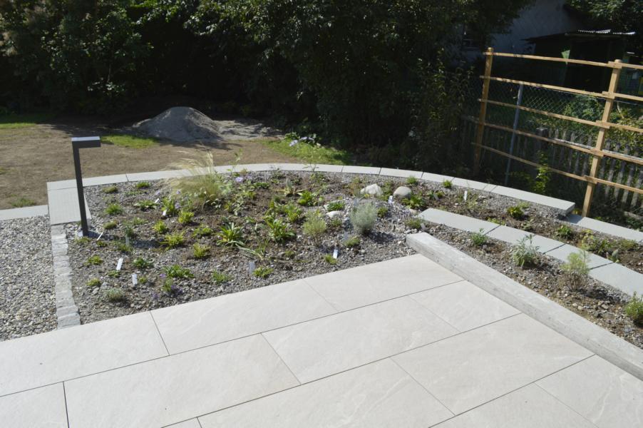 Wildblumenbepflanzung der Terrassen