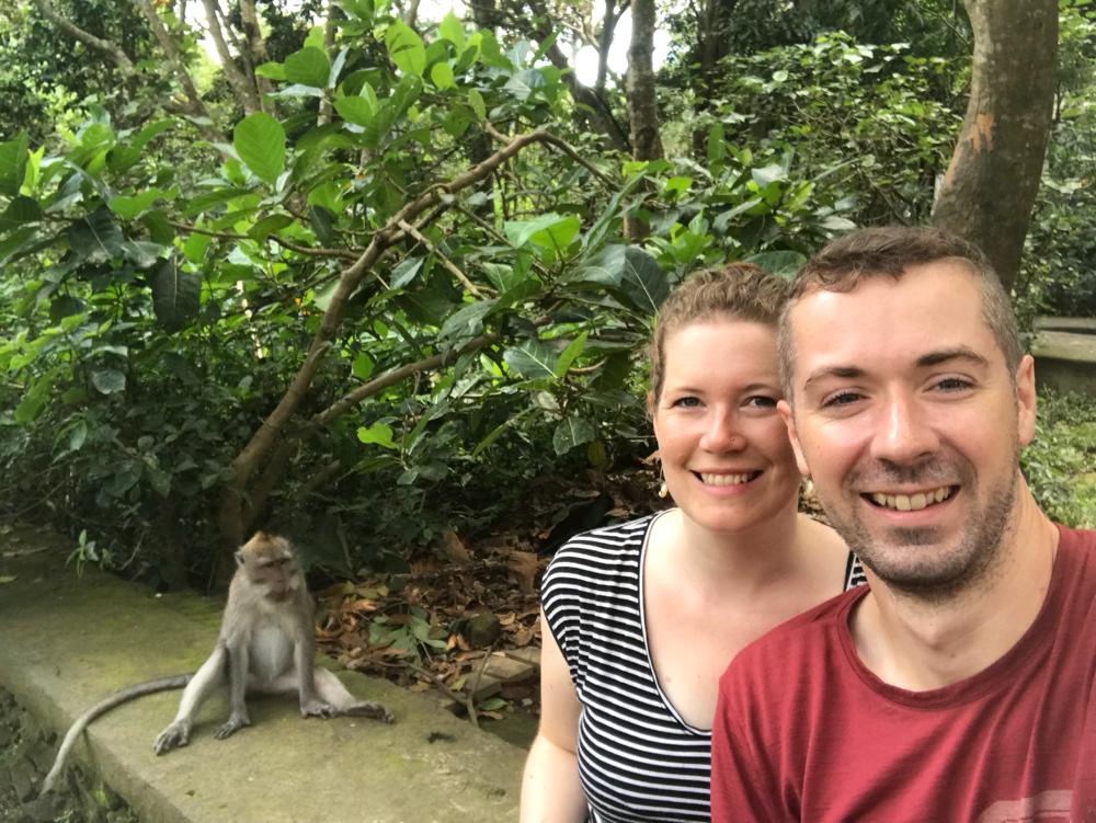 Drei Affen im Affenwald...