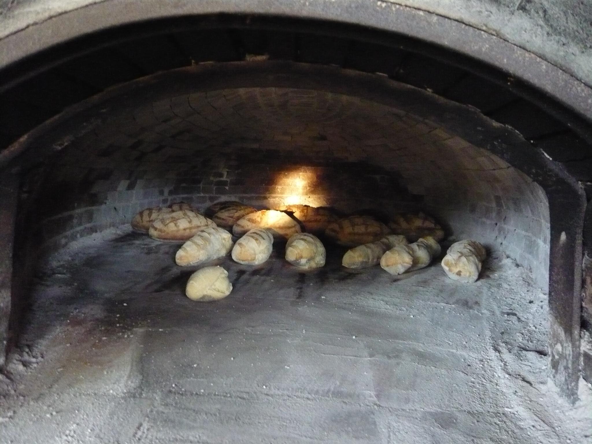 Le pain est au four