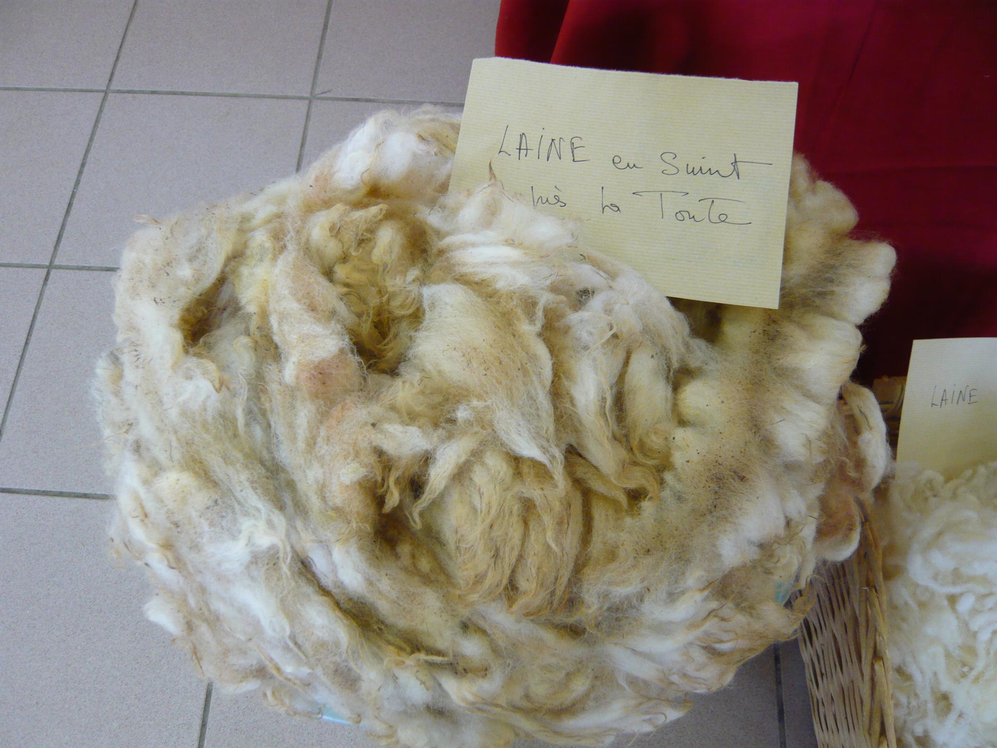 La laine brute