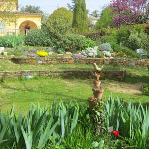 vue de l'Amphithéâtre de verdure et Rocaille