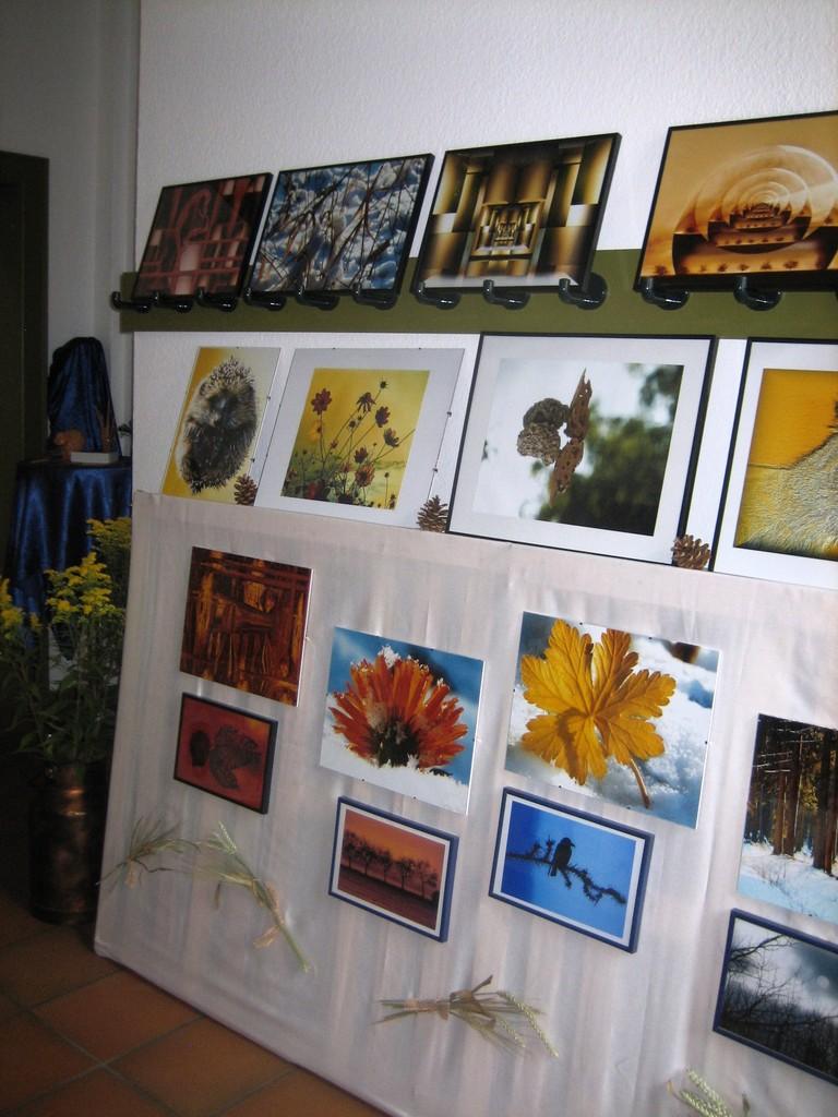 Ausstellung Alte Schule 2009