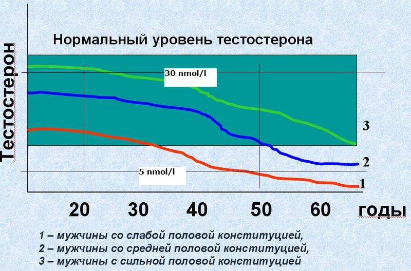 тестостерон норма ожирение у мужчин