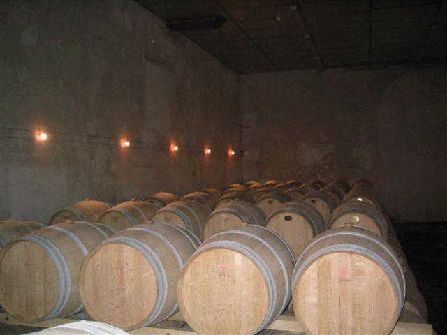 Château Segonzac/Barriques-Fässer
