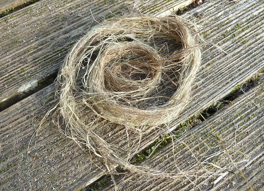 Fasern sehr alter relativ trockener Brennnesseln