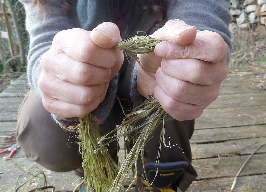 Fasern knicken