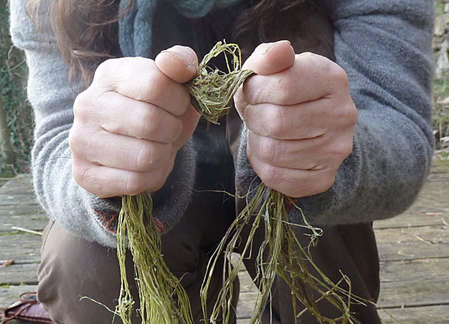 Fasern knicken, Holzreste entfernen