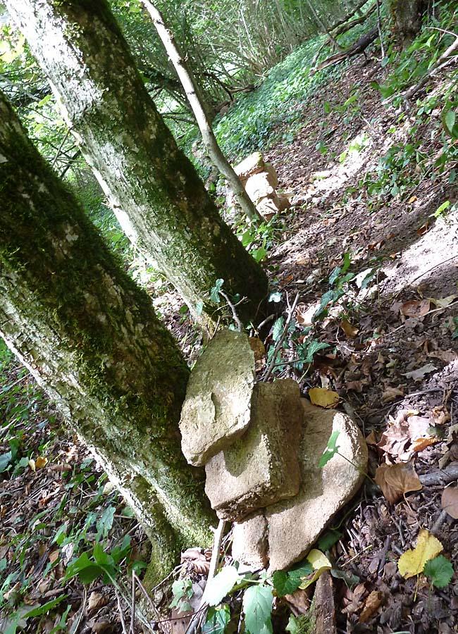 Steine im Wald, Kreativität ist ansteckend