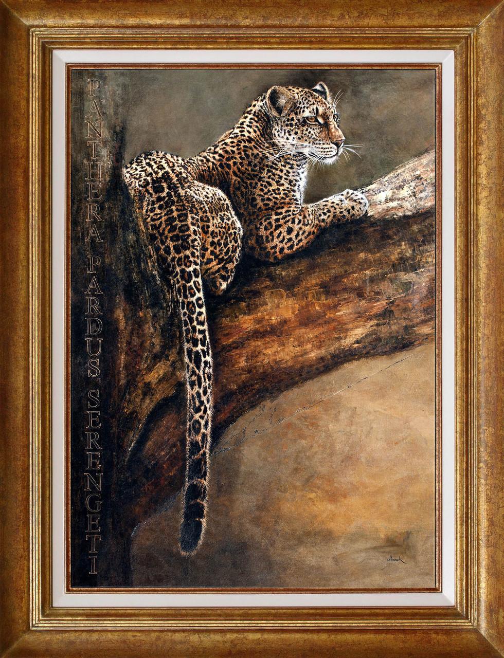 Beck, panthere du Sarengeti