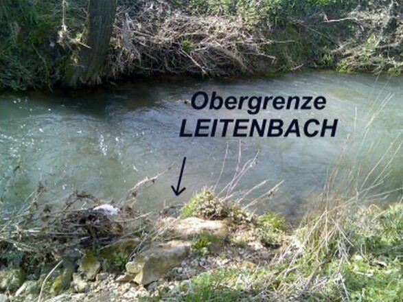 Obergrenze Leitenbach 1