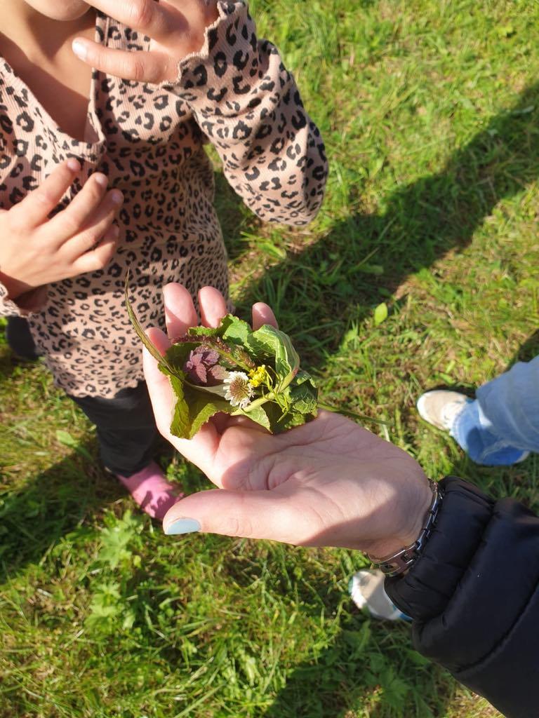 Geschneke aus der Natur für die erste Lehrerin :-)