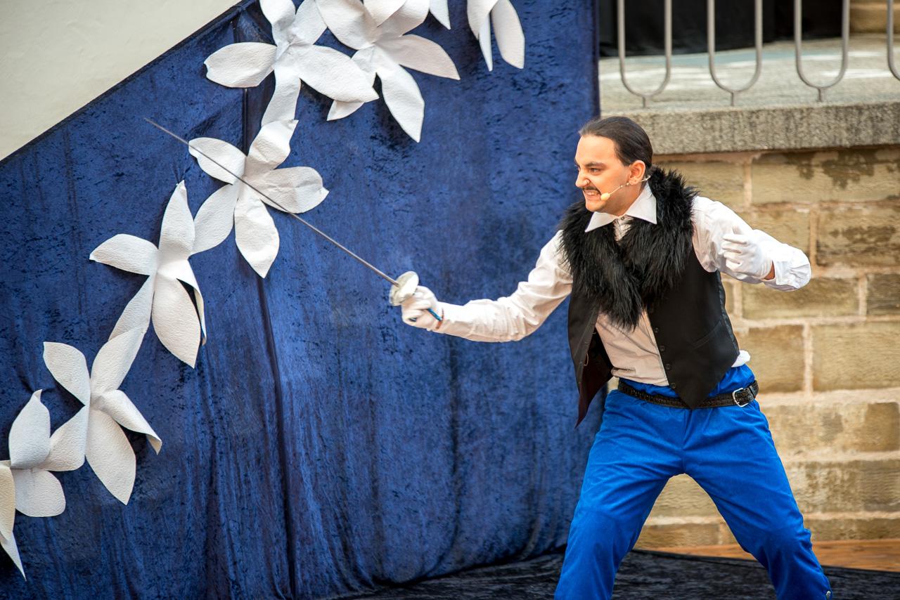 2016: Vicomte Valvert in Cyrano de Bergerac