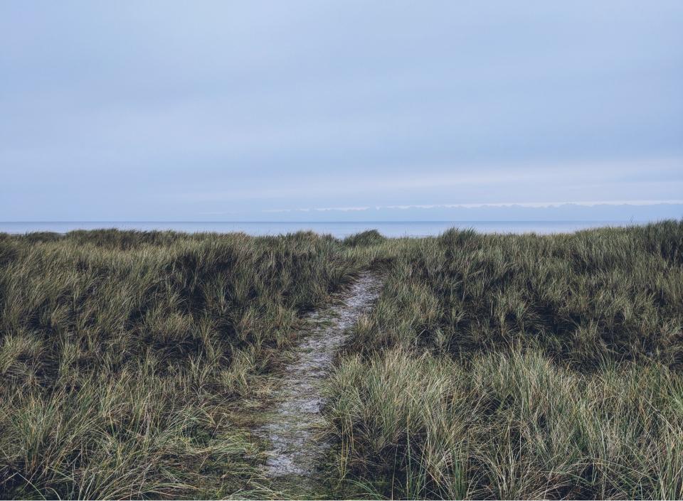 Morgendliche Wanderung