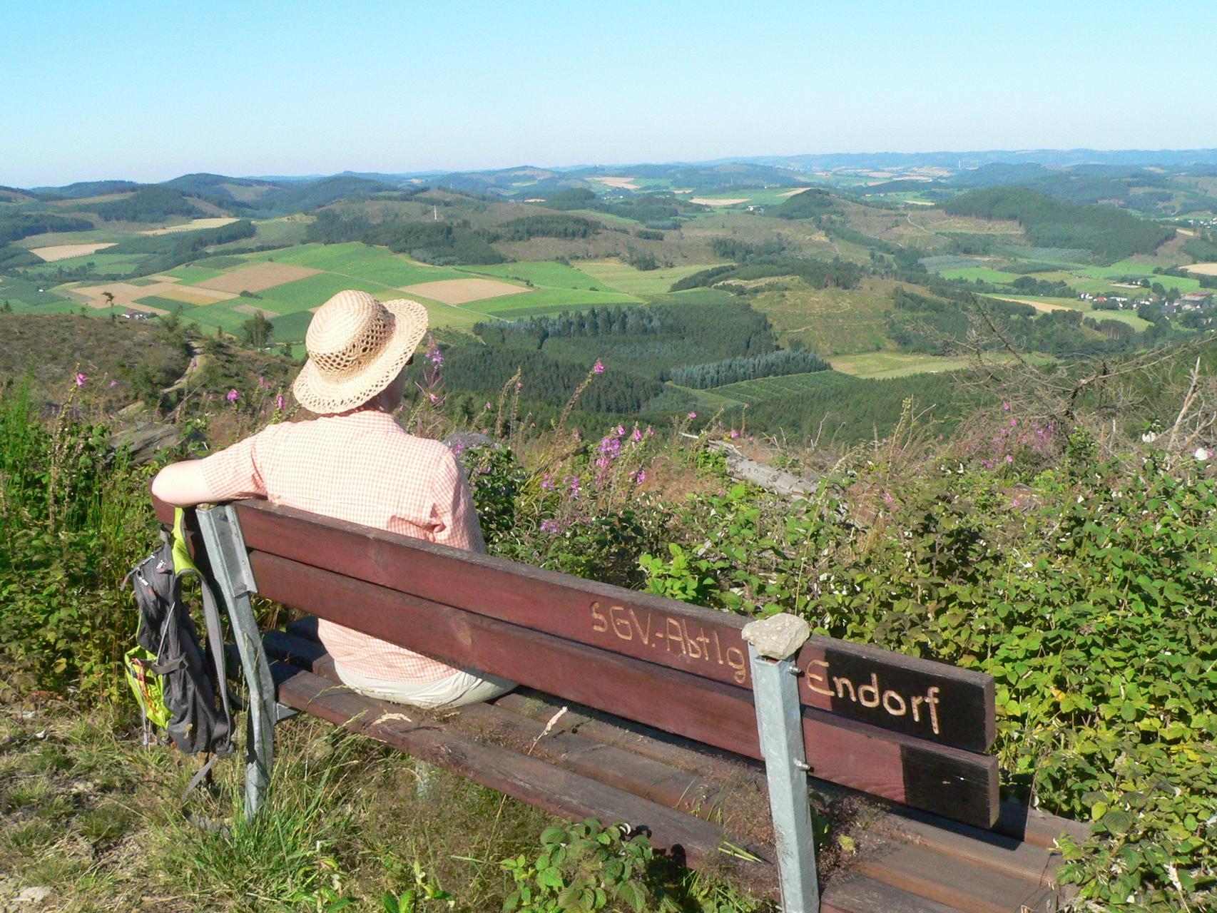 Blick vom Dümberg