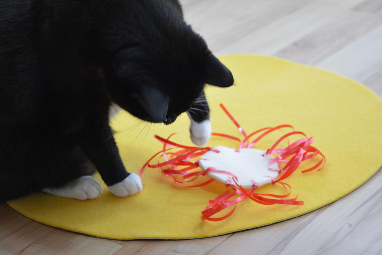 katzenspielzeug selber machen only cats. Black Bedroom Furniture Sets. Home Design Ideas