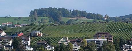Sicht vom Zürichsee auf die Hasenhalde.