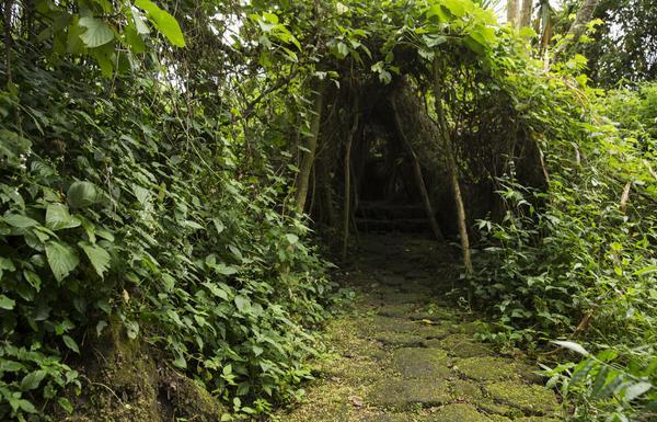Buhanga-Eco-Park-Rwanda.jpg