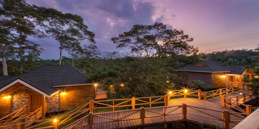 Chimpundu-Lodge-Kibale-forest-national-park.jpg