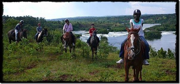 Horseback Riding Safaris along the Nile at Jinja