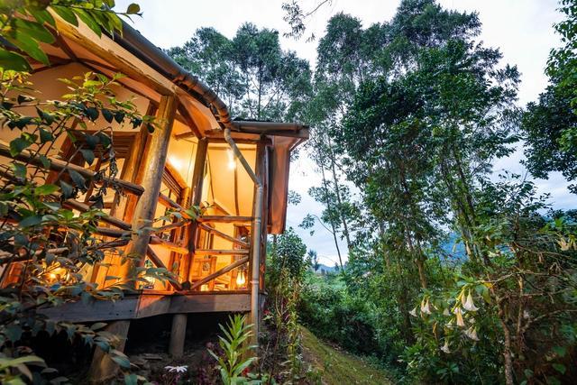 Gorilla-Safari-Lodge.jpg
