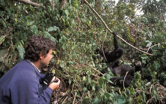 gorilla_trekking_uganda.jpg