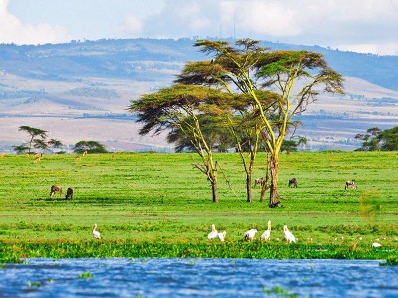Lake-Naivasha.jpg
